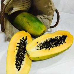 Papaya ecológica
